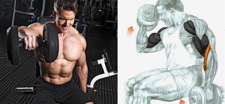 2-full-body-superset-workouts-for-strength-and-size
