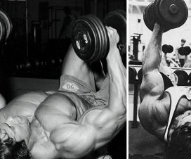chest-flys-big-chest-growth-the-arnold-way