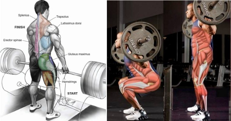 one-step-to-the-perfect-deadlift