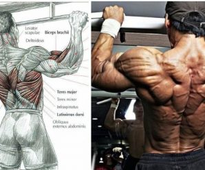 5-tips-to-improve-your-pulling-power