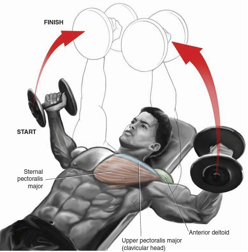 chest-superset-1