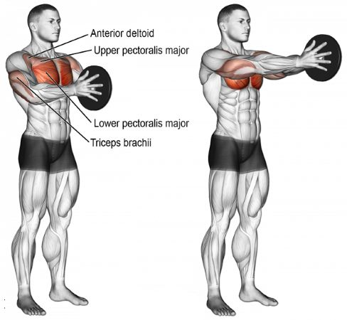 chest-superset-3