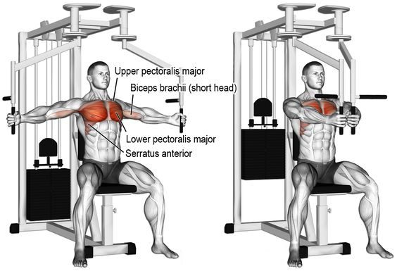 chest-superset-4