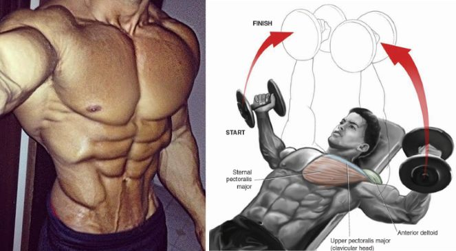 chest-superset