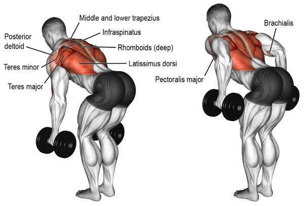 two-arm-dumbbell-row