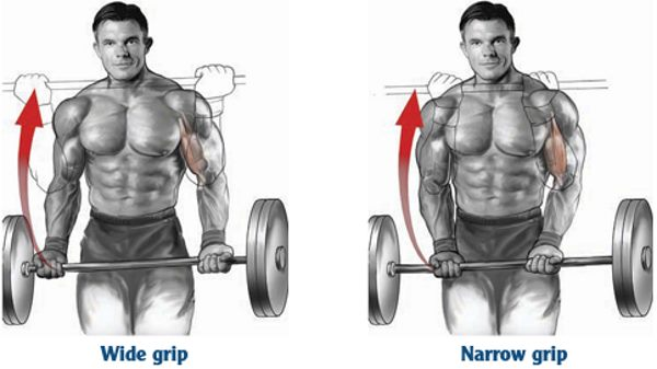barbell-curl-wide-narrow-grip