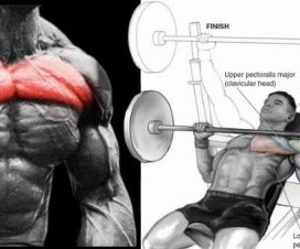 build-your-upper-chest