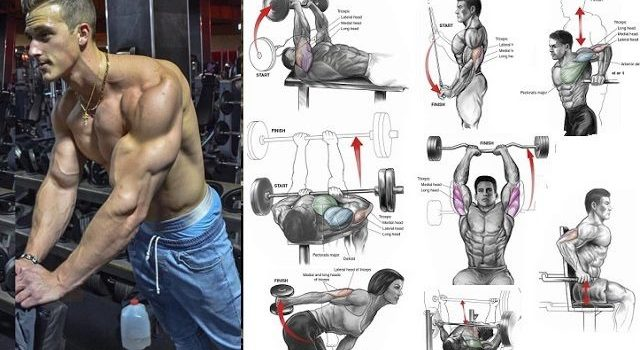 best-exercise-for-tricep-mass