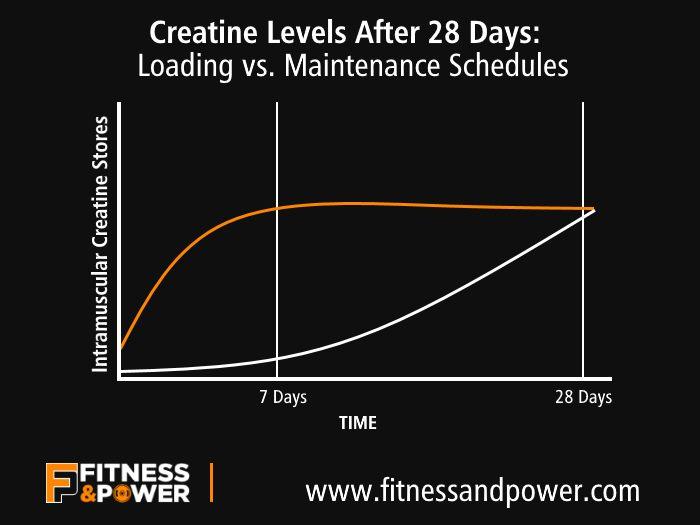 creatine-loading