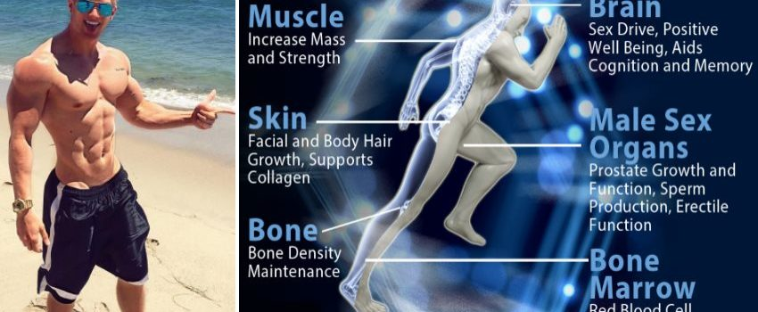 lifestyle-changes-boost-testosterone