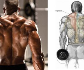 paused-shrugs-for-bigger-traps