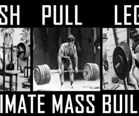push-pull-legs-routine
