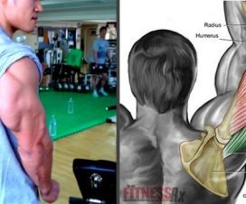 the-4-best-muscle-building-triceps-exercises