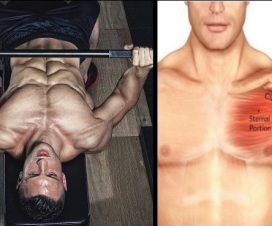 bench-press-grip-wide-bench-press-grip