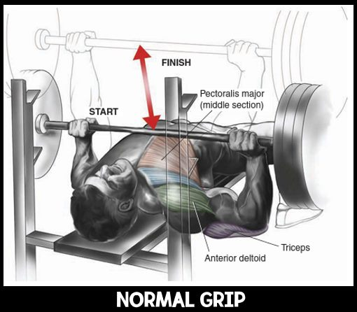 normal-grip-banch-press