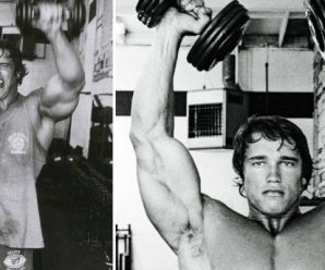 arnold-shoulder-traps-workout