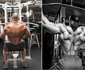 lat-pulldowns-grip