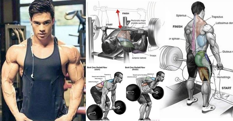 top-8-compound-lifts-for-maximum-size-and-strength