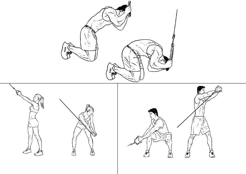 cable-core-exercises