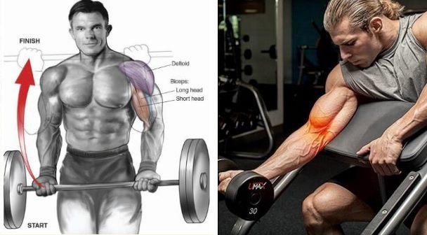 maximize-biceps-growth-mechanical-drop-sets