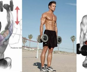 4-day-dumbbell-workout
