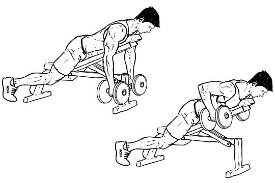 Incline_Dumbbell_Row